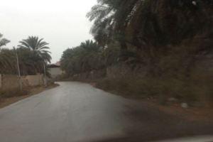 بالفيديو.. هطول أمطار غزيرة على المدينة المنورة وتوقعات بهطول المزيد