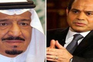 """السعودية توجه ضربة قوية لمصر وتوقف استيراد الموالح """"تفاصيل"""""""