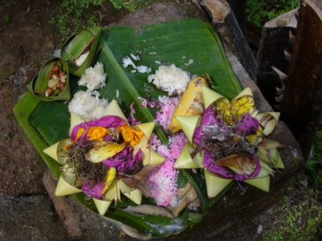 Offerings-Ubud-1024x768