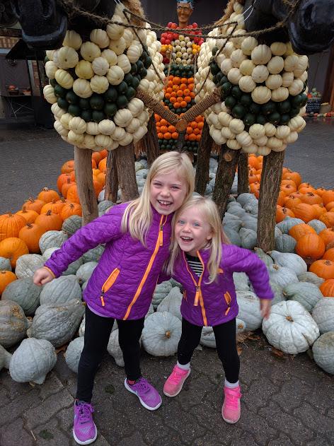 Pumpkin Patch and Brunch at Jucker Farm
