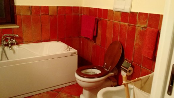 Loved the soaking tub and burnt umber tile.