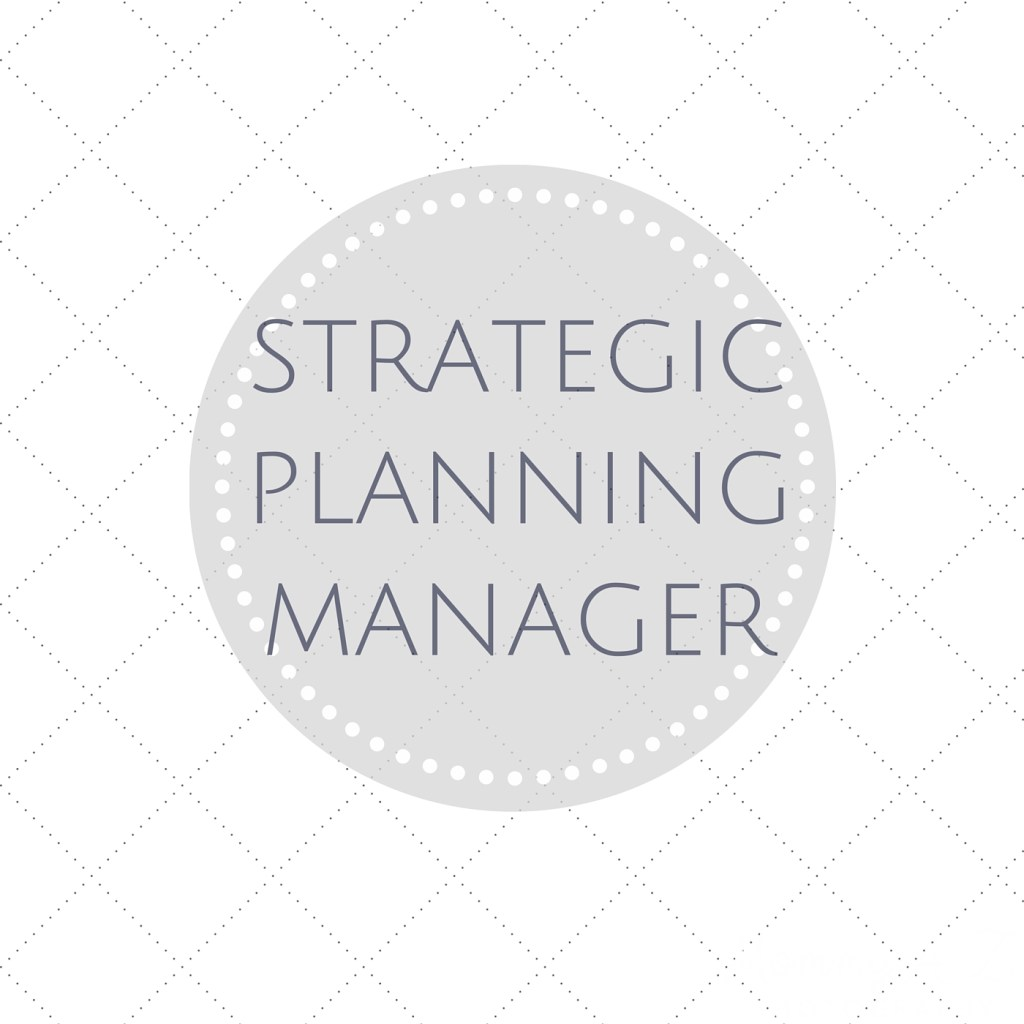 The Day Job: Strategic Planning Manager