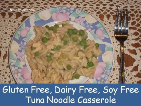 TunaNoodleCasserolePresentation1
