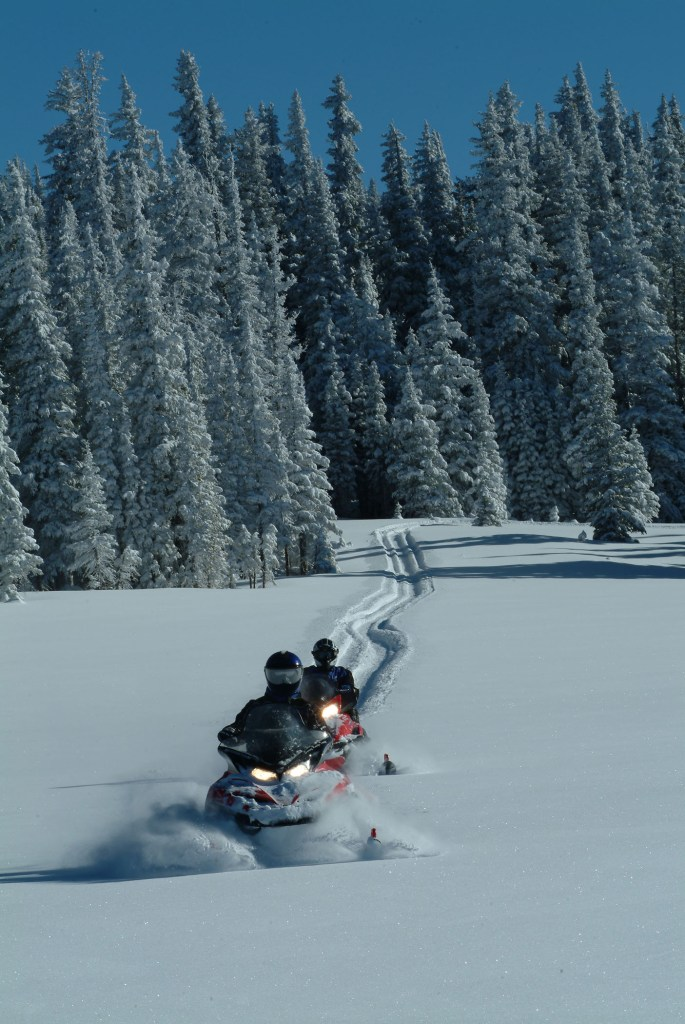 Snowmobiling in the Snowy Range of Wyoming