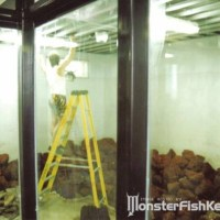 10 000 gallon saltwater fish tank - 20,000 gal tank | Saltwaterfish Forum
