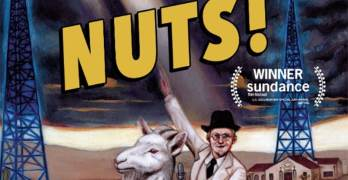 Nuts! review
