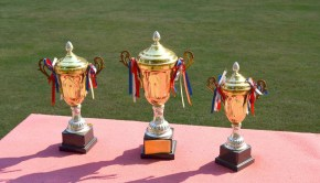 trophy-83115_960_720