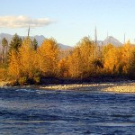 The lower Flathead River is a great place to fish