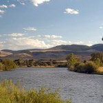 Salmon Flies Swarming the Madison: Butte and Bozeman Outdoor Report