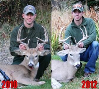 2010 to 2012