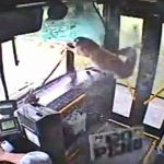 Deer Hops on Bus without Paying Fare