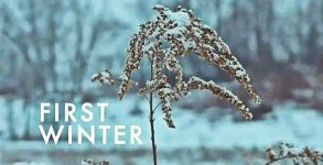 firstwinter