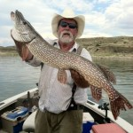 The Captain spent another great week at Fort Peck Reservoir – Montana Fishing Report