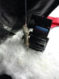 fishcaught
