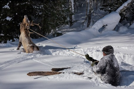 Hunting-With-Skis