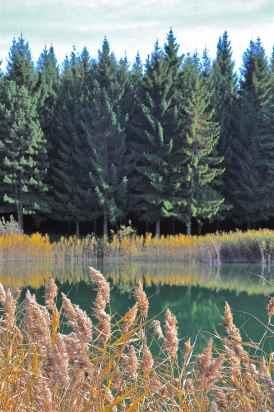 L'estate del Lago degli Stocchi