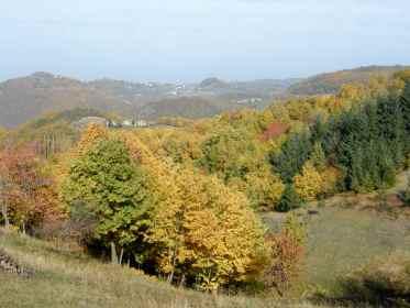 L'autunno di Montefenaro