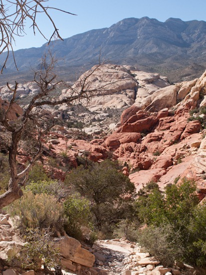 Calico tanks trail - 05.03.2012 - 19.19.56