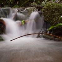 Las Alturas Streams - 20130705 - 7