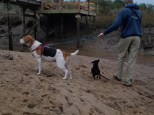 Skidaway Island with Jenn and Matt - 12.31.2013 - 13.33.58