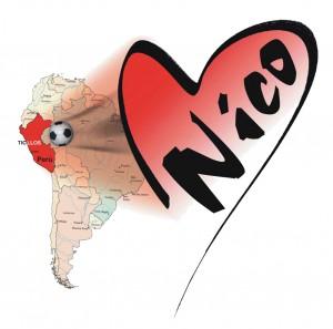 Giocando per Nico - IX Edizione @ Montorio Veronese   Montorio   Veneto   Italia