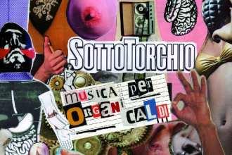 Sottotorchio_-_Musica_Per_Organi_Caldi
