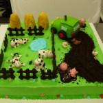 boerderijtaart groot tractor varkens kippen koeien
