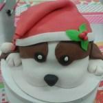 lessen taartdecoratie workshops kersthond 3d suikerpasta