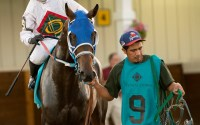 Why 2016 will be horse racing's biggest year