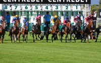 Betting the 2016 AAMI Victoria Derby – Betting and Odds