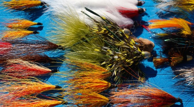 Fly Tying Courses