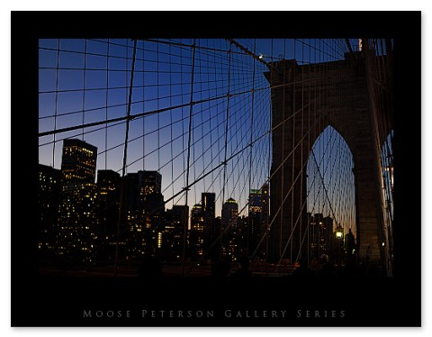 bridge1 copy.jpg
