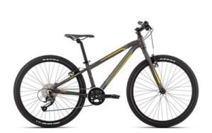 Orbea MX 24 Team Kinderrad