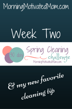30 Day Spring Cleaning Challenge Week Two Podcasts