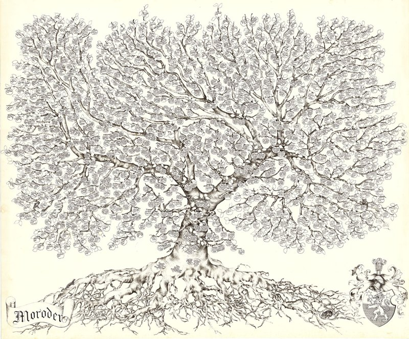 Large Of Family Tree Picture