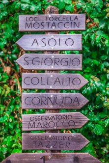 Many great places to go....where next?
