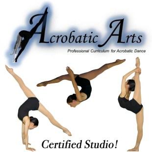 Acro Arts Certified Studio