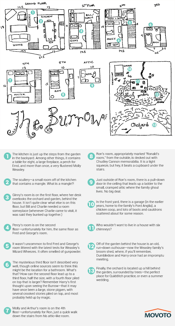 Burrow-explained-587