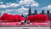 Philadelphia Wonderland 4