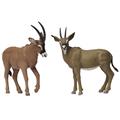 noah's pals antelope
