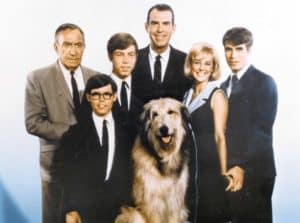 "Cast of ""My Three Sons"""