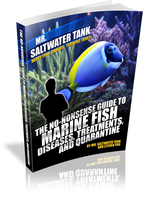 The No Nonsense Guide to Marine Fish Diseases, Quarantine and