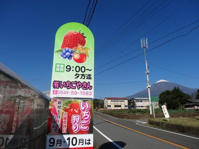 富士山の麓【いちごやさん】でイチゴ食べ放題(30分)お土産つき