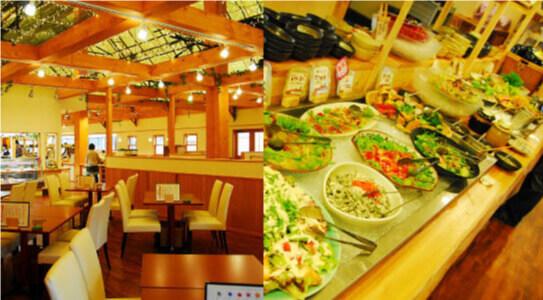 農場レストラン(ランチバイキング)』で富士山麓の恵みいただきます!