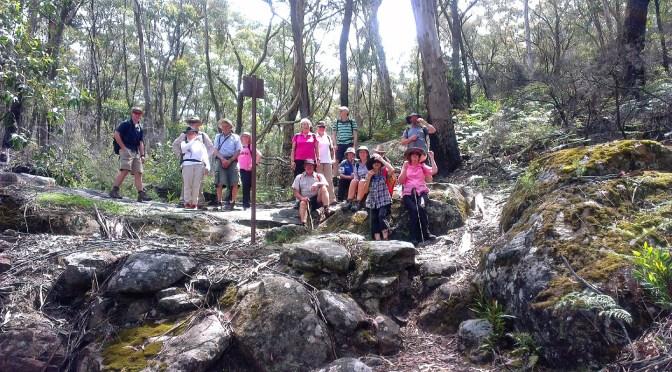 Bushwalk at the historic mountain passes, mount York NSW