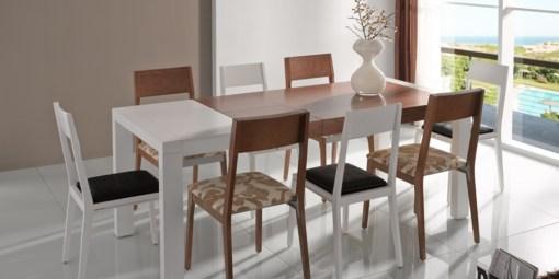 Mesa comedor y ocho sillas