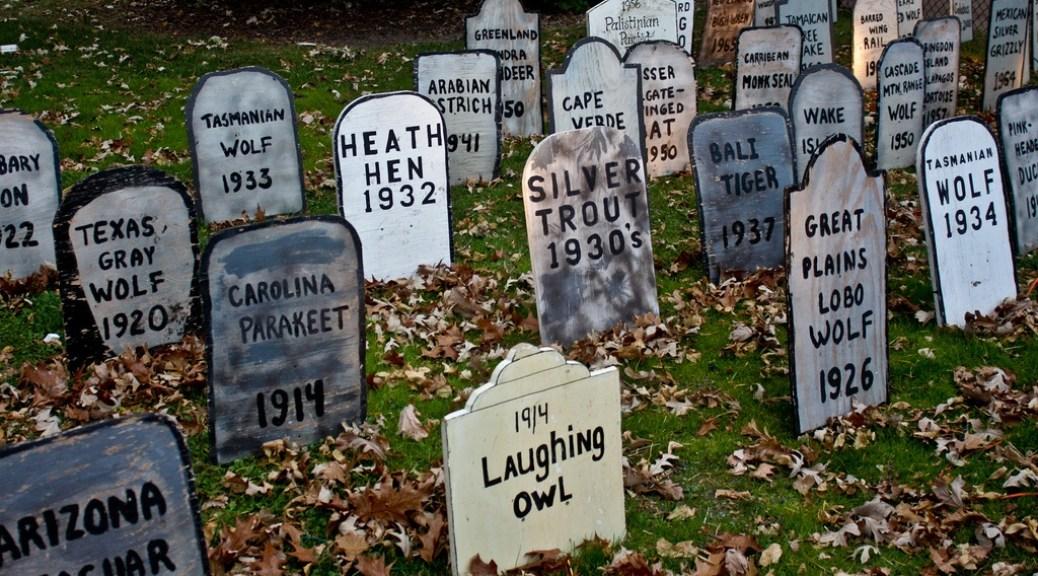 CC-Bart-Heird-extinction-graveyard