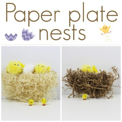 PAPER PLATE NESTS SQUARE