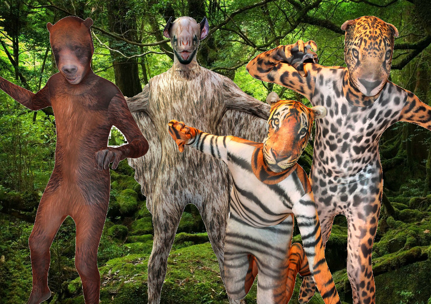 children's animal morph suit competition for world book day