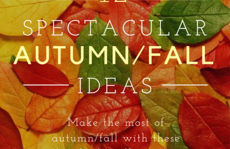 Autumn ideas for you and your family